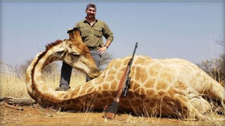 Idaho Fish and Game commissioner Black Fischer has come under fire after emailing several coworkers photos of the animals he shot and killed on a hunting trip in Africa. OBTAINED BY KBOI THROUGH GOVERNOR BUTCH OTTER'S OFFICE