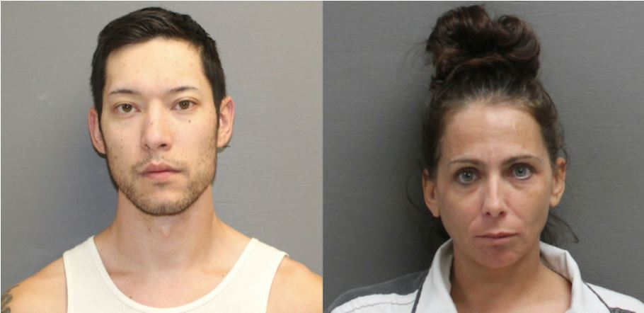 Great Falls couple charged