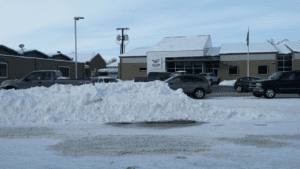 laurel-snow